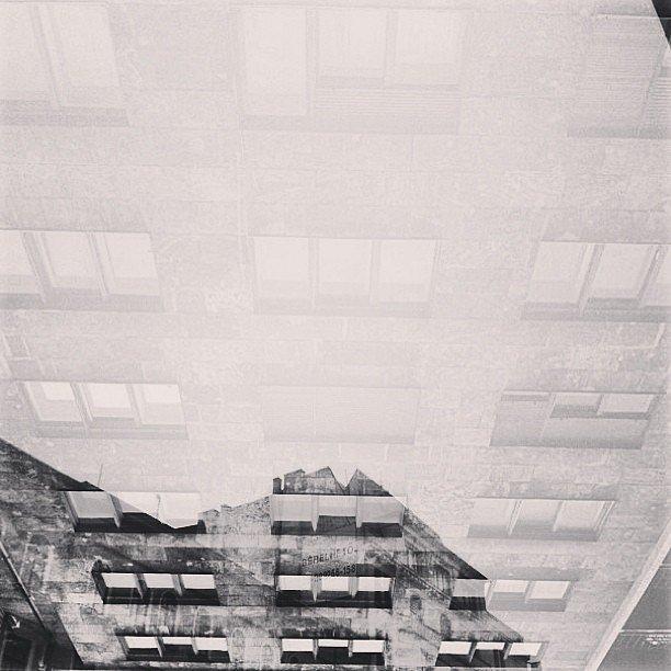 Windows + Building